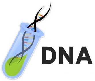 Exame de DNA gratuito